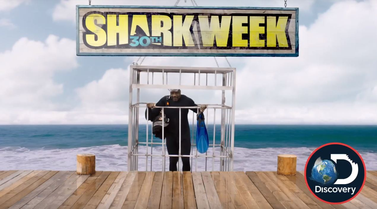 How to watch Shark Week without Cable 2018 - Overthrow Cable
